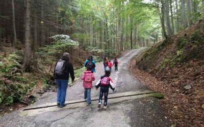 Výlet s dětmi na Lesní bar