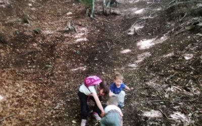 Letní výlet s dětmi do Lesního baru